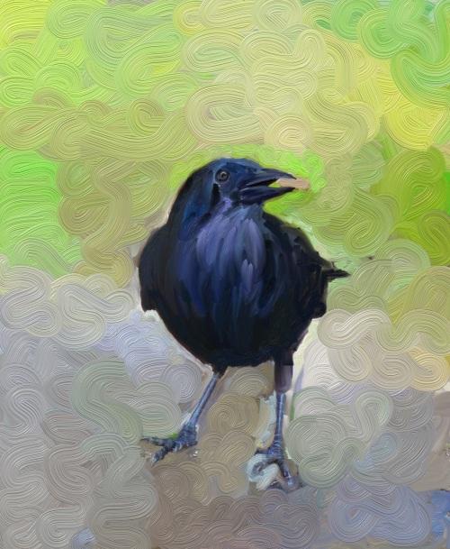crow_001