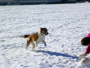 max in de snow