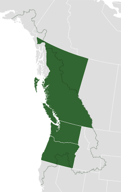 cascadia_map_and_bioregion_vector_svg